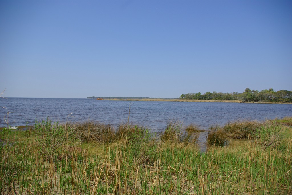 100413_MSABLOG_OUTERBANKS_12
